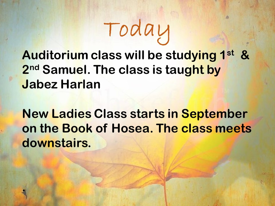 Bible Classes for All Ages